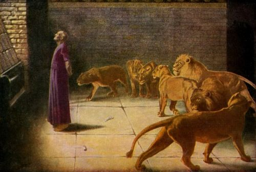 daniel_and_the_lions__image_1_sjpg2283